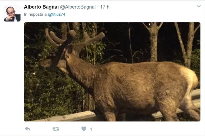 bagnai_cornuto_mazziato